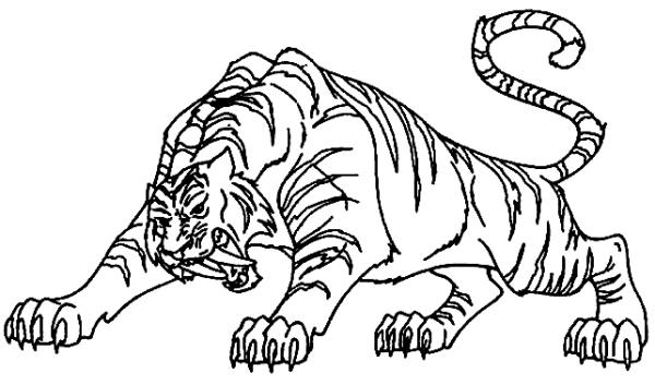 Tigre  68 (animales) – Páginas Para Colorear