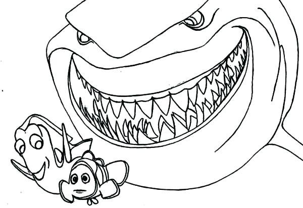 ✎ Dibujos De Tiburones 【+tutorial】 Un Bello Tiburón Para Colorear