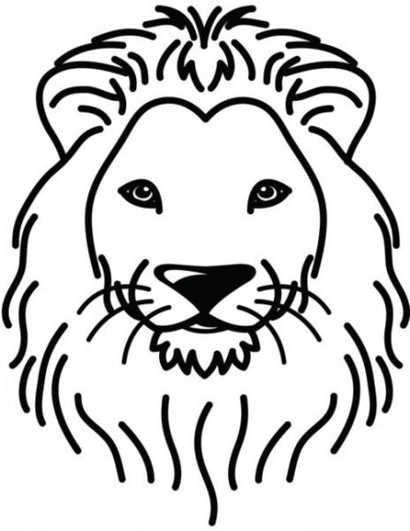50 Mejores Imágenes De Leones Increibles – Todo Imágenes