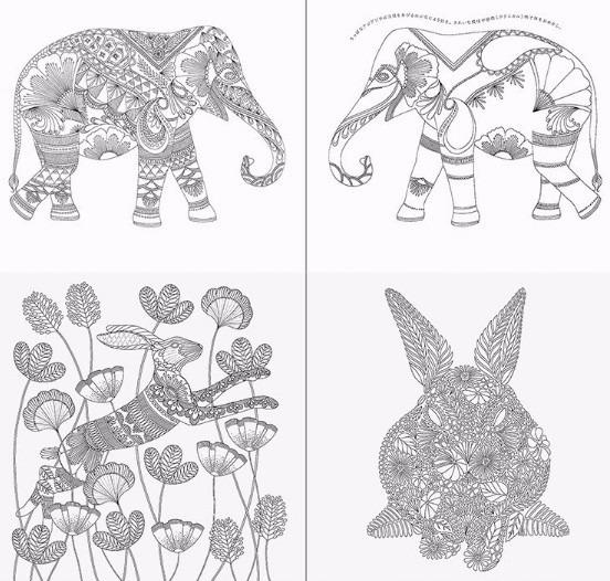 Libro Reino Animal, 96 Páginas, Animal Kingdom Para Colorear