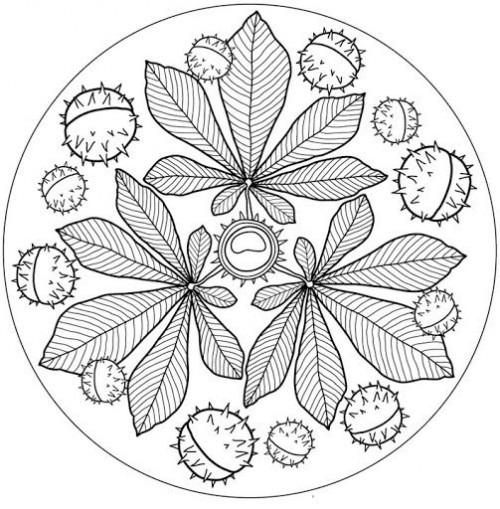 Dibujos De Mandalas E Imágenes De Otoño Para Colorear ¡bienvenido