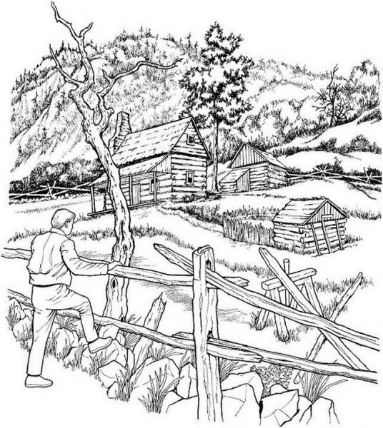 Colorear Para Adultos, Dibujo Paisaje Forestal