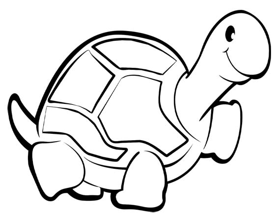 Dibujos De Tortugas Para Colorear E Imprimir