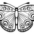 Mariposas Para Imprimir Y Colorear