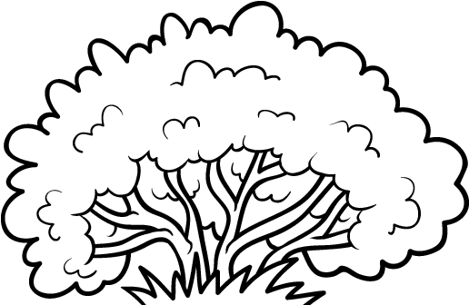 Download Hd Drawn Shrub Color