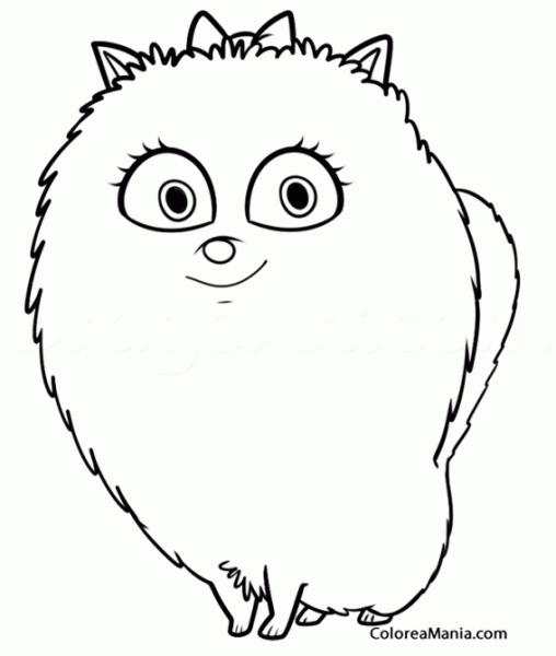 Colorear Gidget (mascotas (2016)), Dibujo Para Colorear Gratis