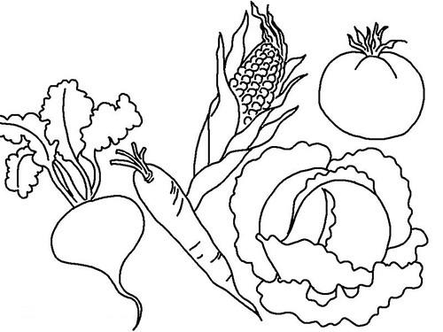 Imágenes Y Dibujos De Verduras Para Colorear E Imprimir
