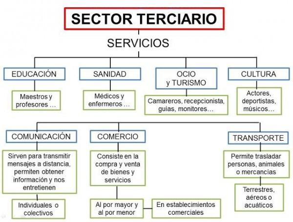 Sector Terciario En España
