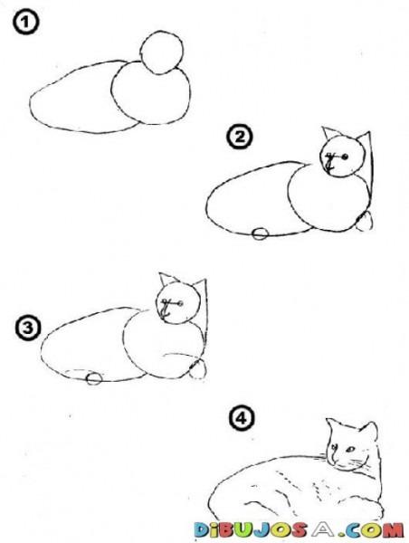 Como Aprender A Dibujar Un Gato En 4 Pasos Para Pintar Y Colorear