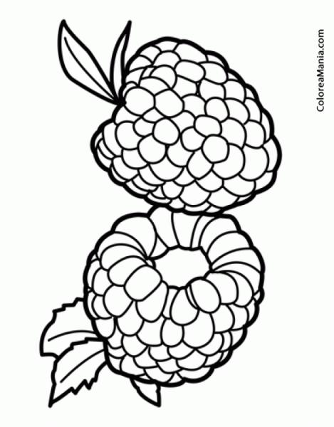 Colorear Dos Frambuesas (frutas), Dibujo Para Colorear Gratis