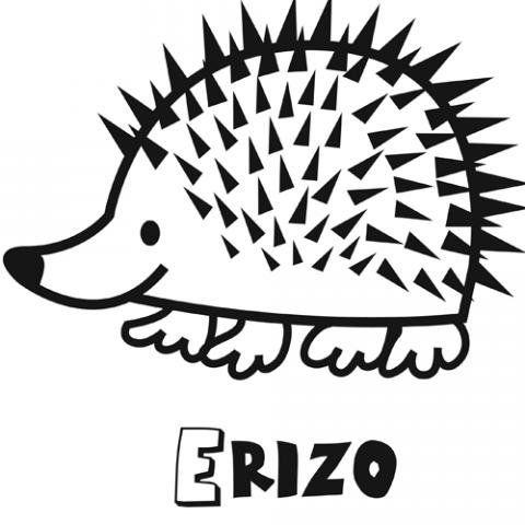Dibujo Infantil De Erizo Para Colorear  Dibujos De Animales Para