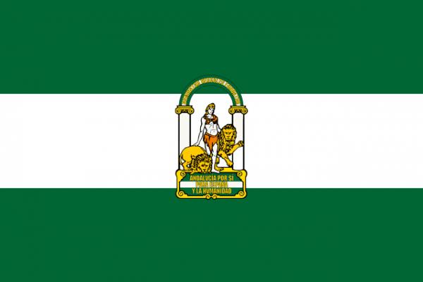 5 Curiosidades De La Bandera De Andalucía Que No Se Ven A Simple Vista