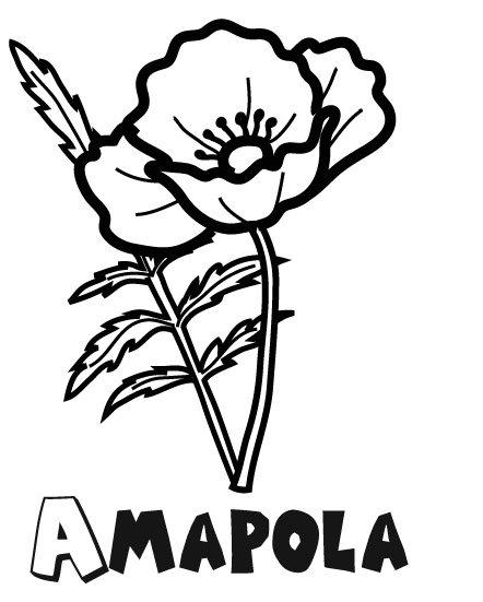 Dibujo Para Imprimir Y Colorear De Una Amapola  Dibujo De Flores