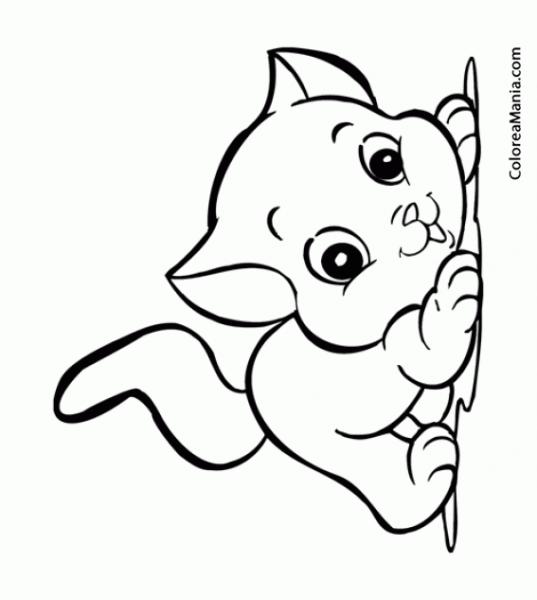 Colorear Gato Juguetón, Infantil (animalitos), Dibujo Para