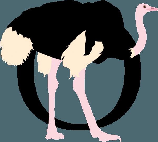 Ostrich Clipart Г±andu