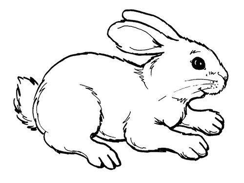 Pin En Dibujos Infantiles