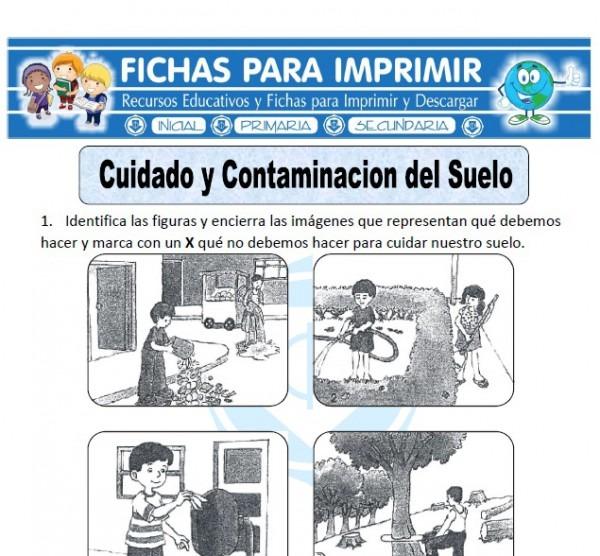 Ficha De Cuidado Y Contaminación Del Suelo