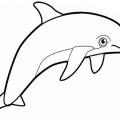 Imagenes De Delfines Para Colorear