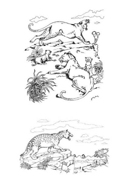 Dibujo Para Colorear Depredadores