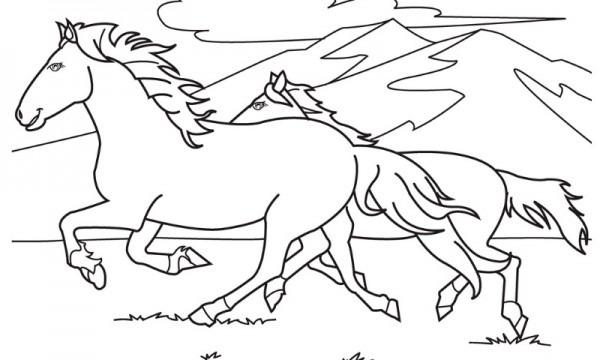 Dibujos De Caballos (para Colorear Y Pintar)