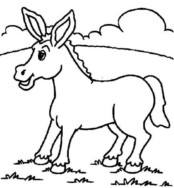 Burro  2 (animales) – Páginas Para Colorear