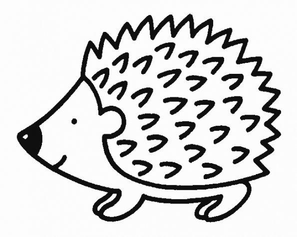 Erizo  1 (animales) – Páginas Para Colorear