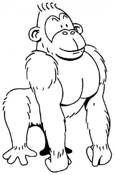 Gorila  54 (animales) – Páginas Para Colorear