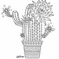 Imagenes Para Colorear Cactus