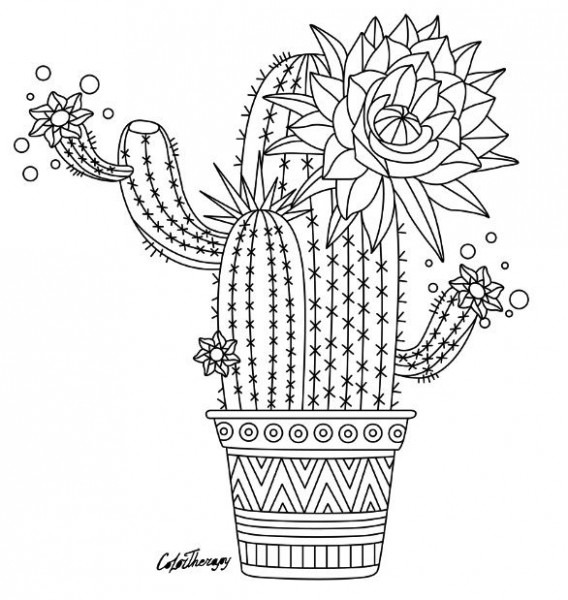 Cactus To Color With Color Therapy  Try This App For Free! Get