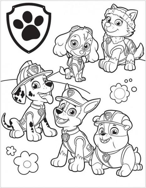 Dibujos De La Patrulla Canina Para Colorear (gratis)