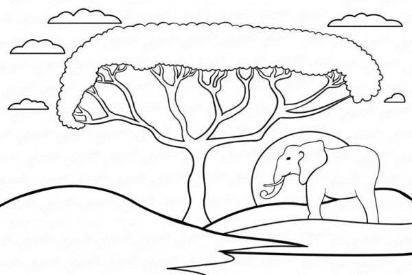 Aprende A Dibujar La Sabana Africana Paso A Paso