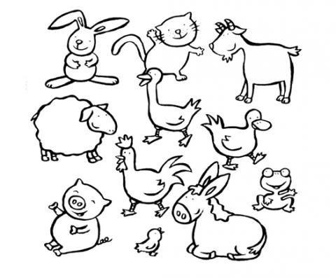 Imagenes De Diferentes Animales Para Colorear