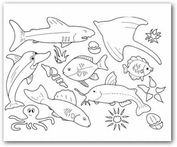 Dibujos Para Colorear Los Animales Del Mar