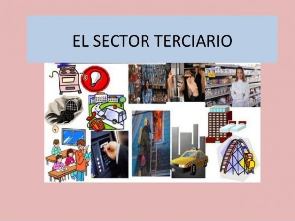 Sector Terciario  Definición Y Ejemplos