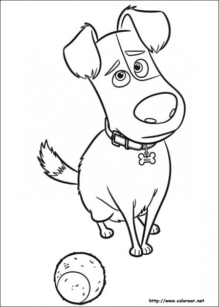 Dibujos Para Colorear De Mascotas