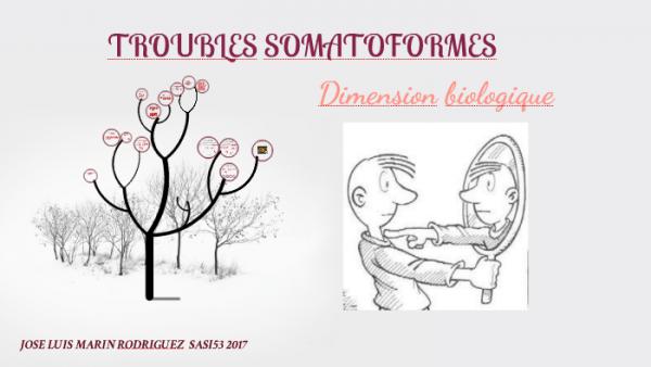 Trouble Somatoforme By Jose Luis Marin Rodriguez On Prezi