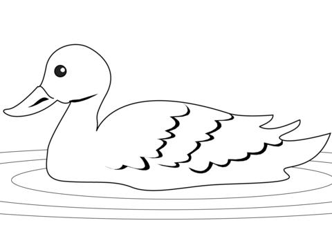 Dibujo De Pato En El Estanque Para Colorear