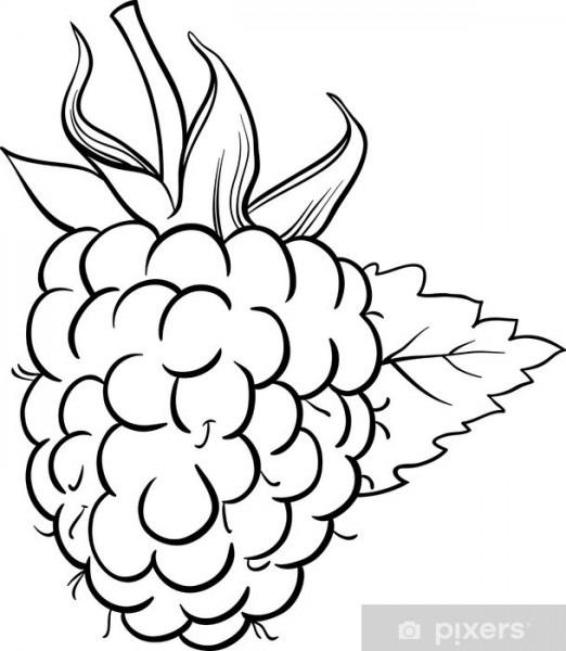 Vinilo Para Mesa Lack Ilustración De Frambuesa Para Colorear