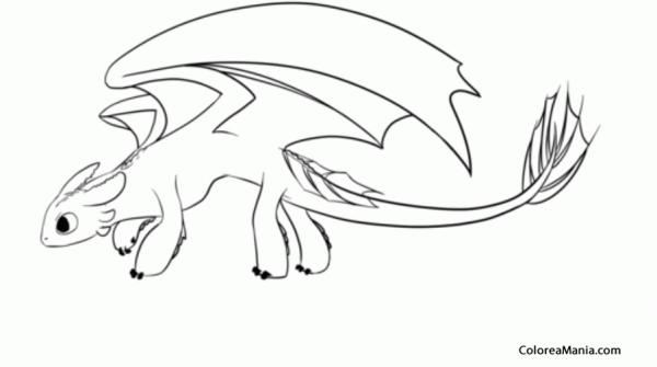 Colorear Furia Nocturna 02 (cómo Entrenar A Tu Dragón), Dibujo