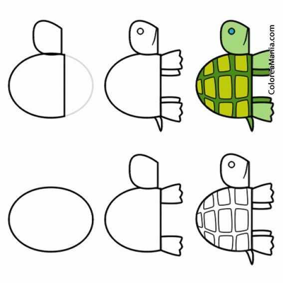 Colorear Dibujar Tortuga De Tierra 2 (como Dibujar Una Tortuga