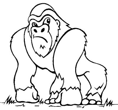 Resultado De Imagen Para Imagenes De Orangutan Para Colorear