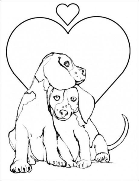 Dibujos Del Dia De San Valentin Para Colorear De Perritos