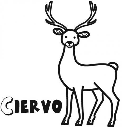 Imprimir  Dibujos De Ciervo Para Imprimir Y Colorear