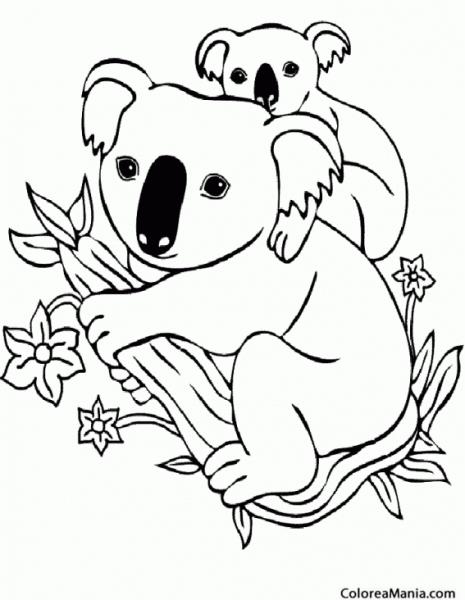 Colorear Koala Con Su Cría (animales Del Bosque), Dibujo Para