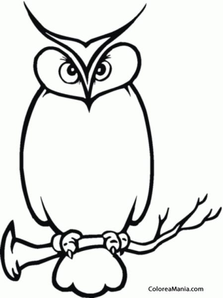 Colorear Búho Silueta (aves), Dibujo Para Colorear Gratis