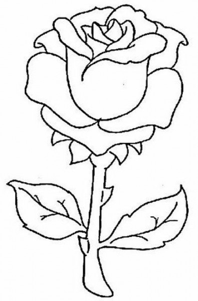 Dibujos De Rosas Rojas Para Pintar En Tela