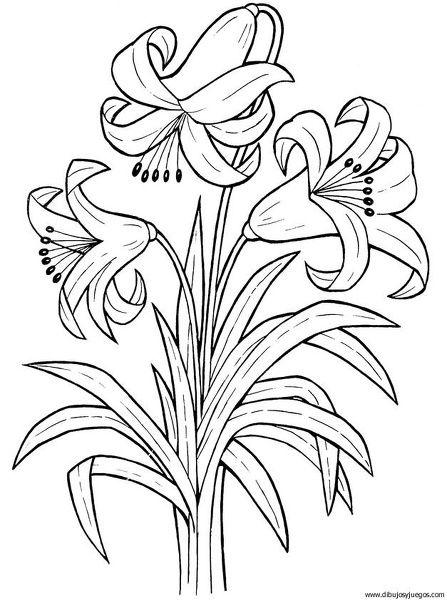 Dibujos De Canastas Con Flores Y Mariposas Para Colorear