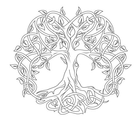 Árbol De La Vida Celta Dibujo Para Colorear