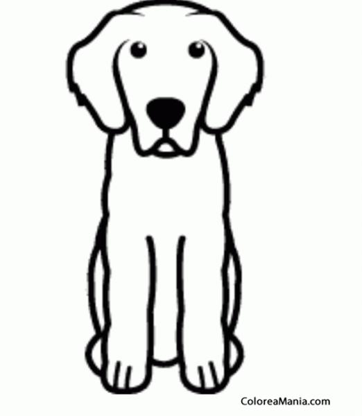 Colorear Silueta Perro Leonberger, Moloso De Pelo Largo (animales