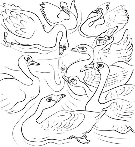Dibujo De El Patito Feo Se Lanza A La Bandada De Cisnes Para